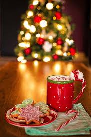 Czego nie dawać psu i kotu ze świątecznego stołu? Wesołych Świąt!